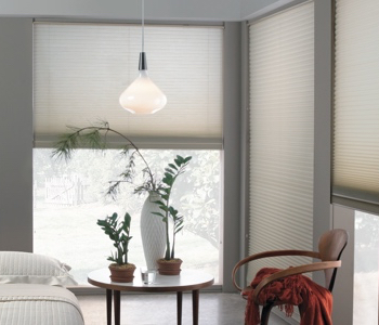 roller shades in Phoenix home